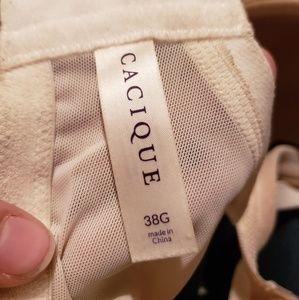 Cacique Intimates & Sleepwear - Modern Lace Balconette Bra 38G